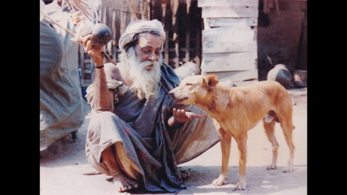 Yogiar with dog